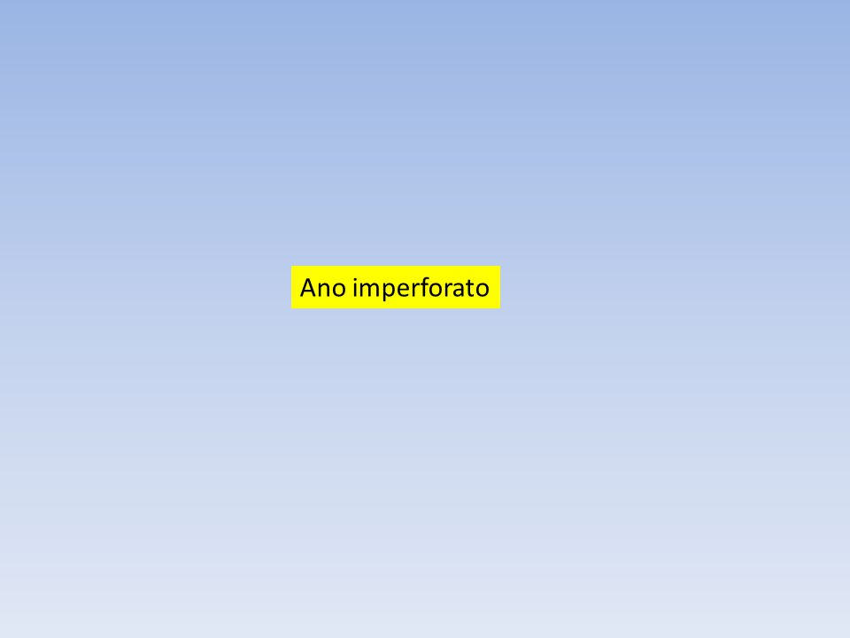 Ano imperforato