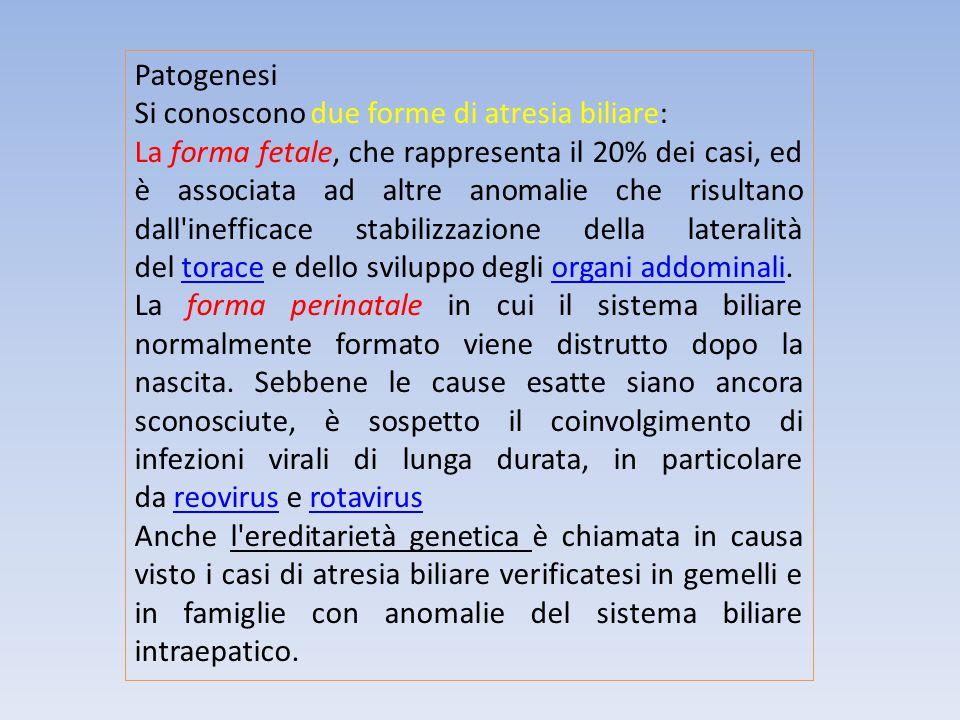 Patogenesi Si conoscono due forme di atresia biliare: