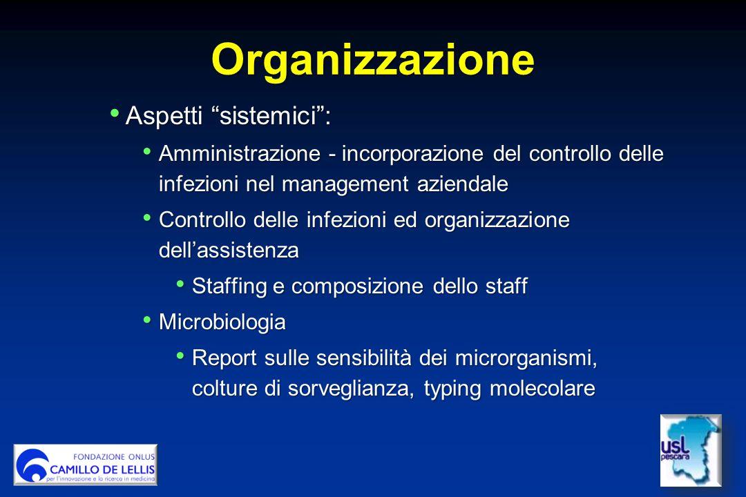Organizzazione Aspetti sistemici :