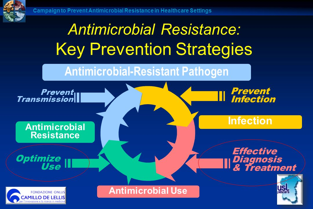 Antimicrobial Resistance: Key Prevention Strategies
