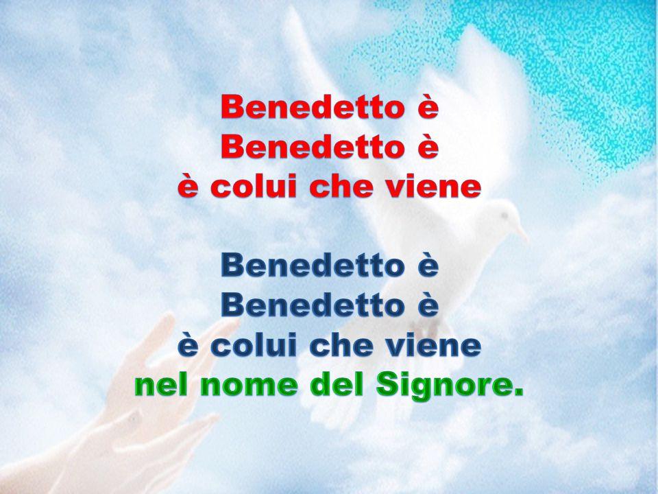 Benedetto è è colui che viene nel nome del Signore.