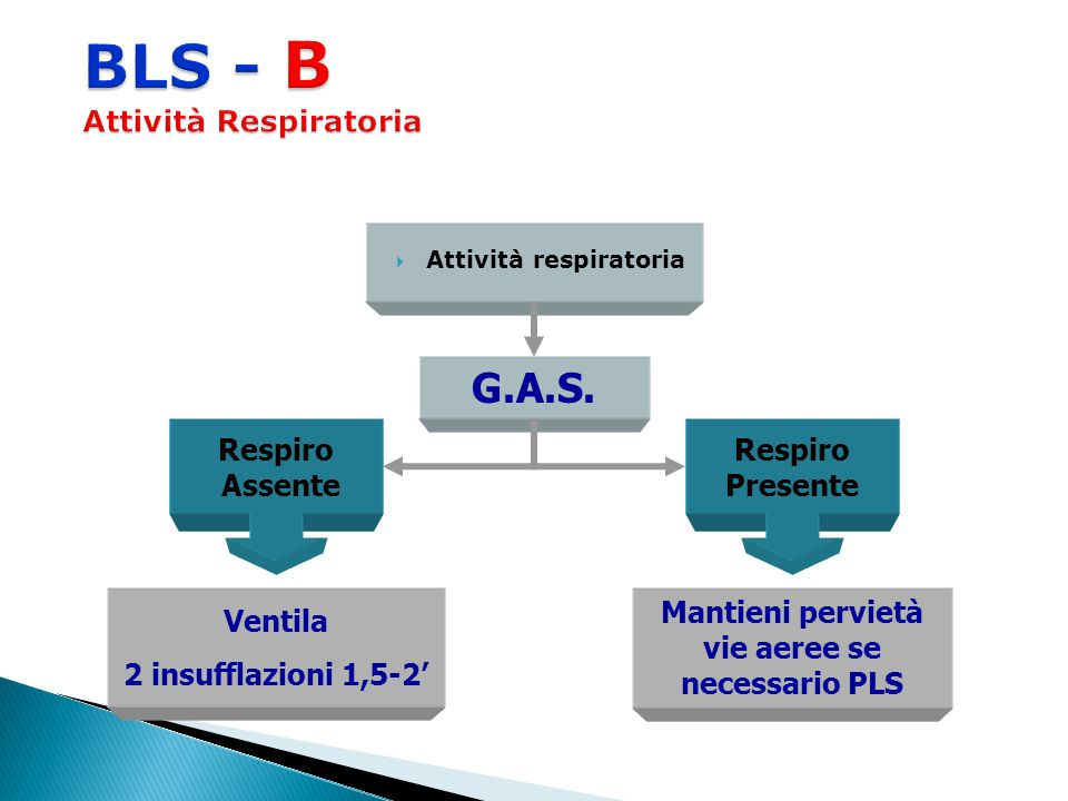 BLS - B Attività Respiratoria