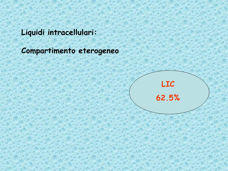 Liquidi intracellulari: