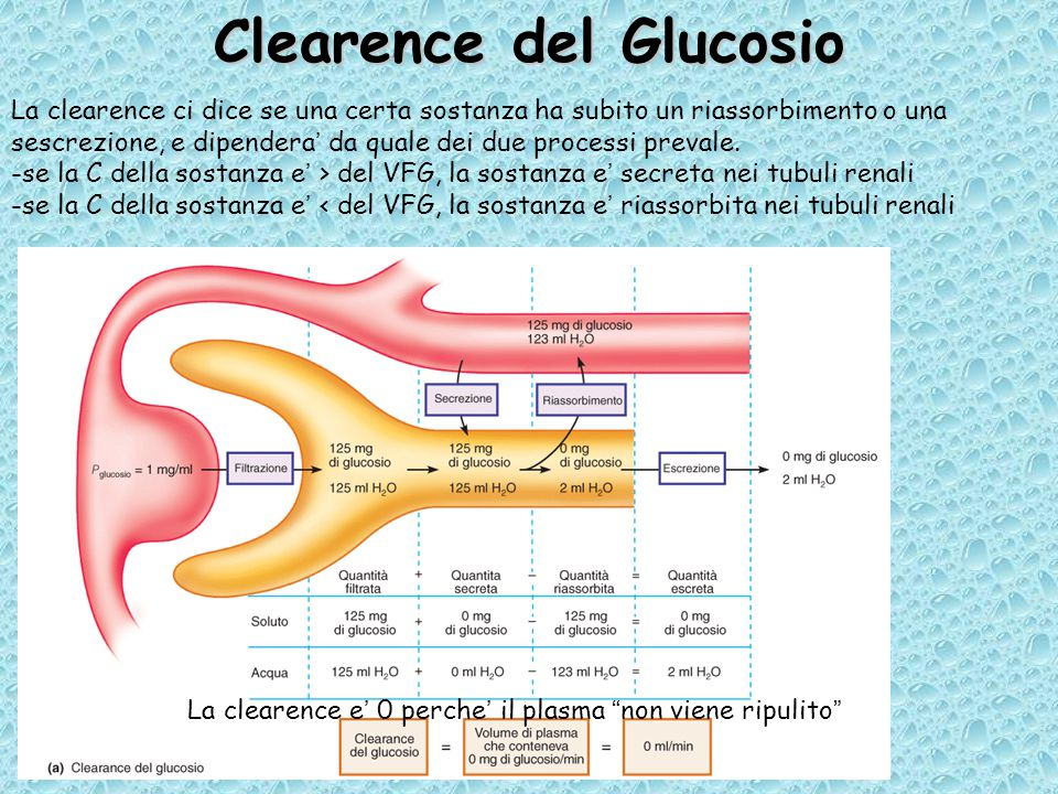 Clearence del Glucosio