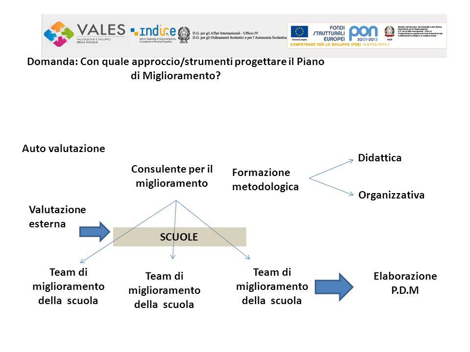 Consulente per il miglioramento Formazione metodologica