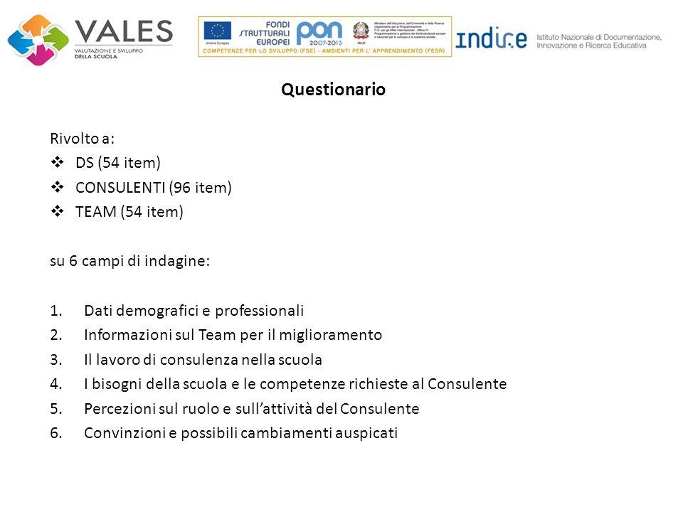 Questionario Rivolto a: DS (54 item) CONSULENTI (96 item)