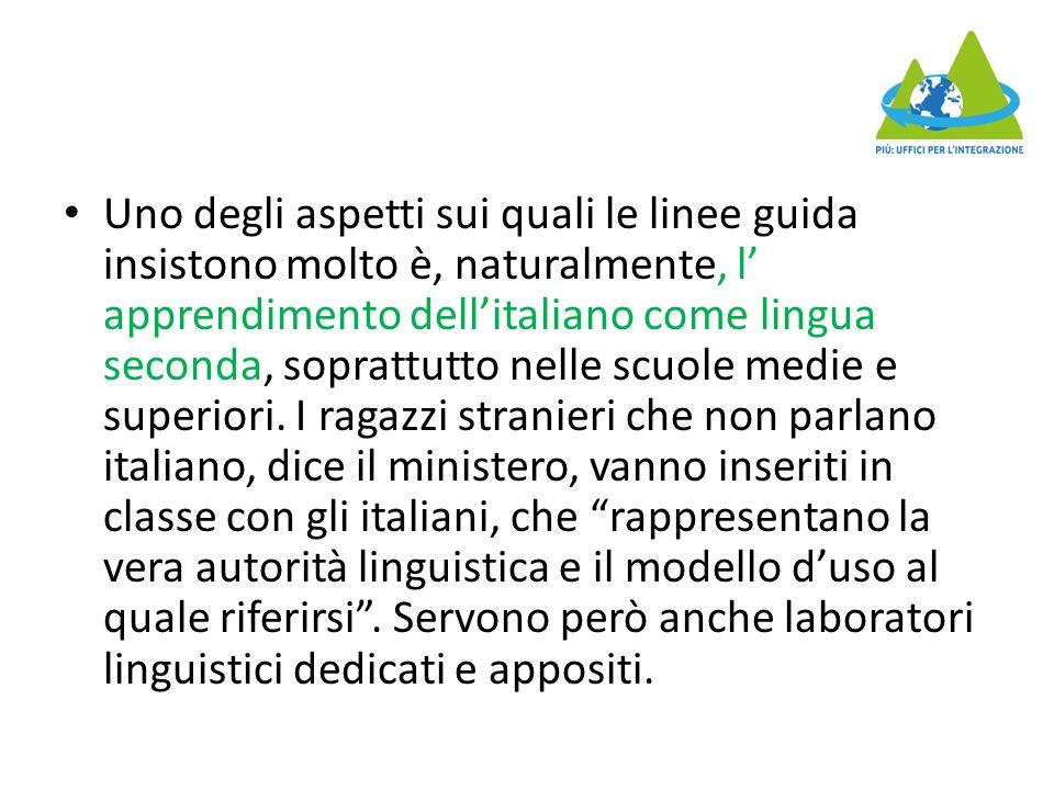 Uno degli aspetti sui quali le linee guida insistono molto è, naturalmente, l' apprendimento dell'italiano come lingua seconda, soprattutto nelle scuole medie e superiori.
