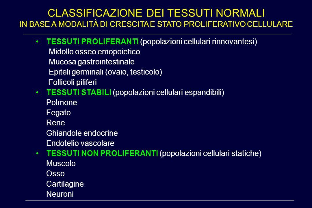 Classificazione dei tessuti normali