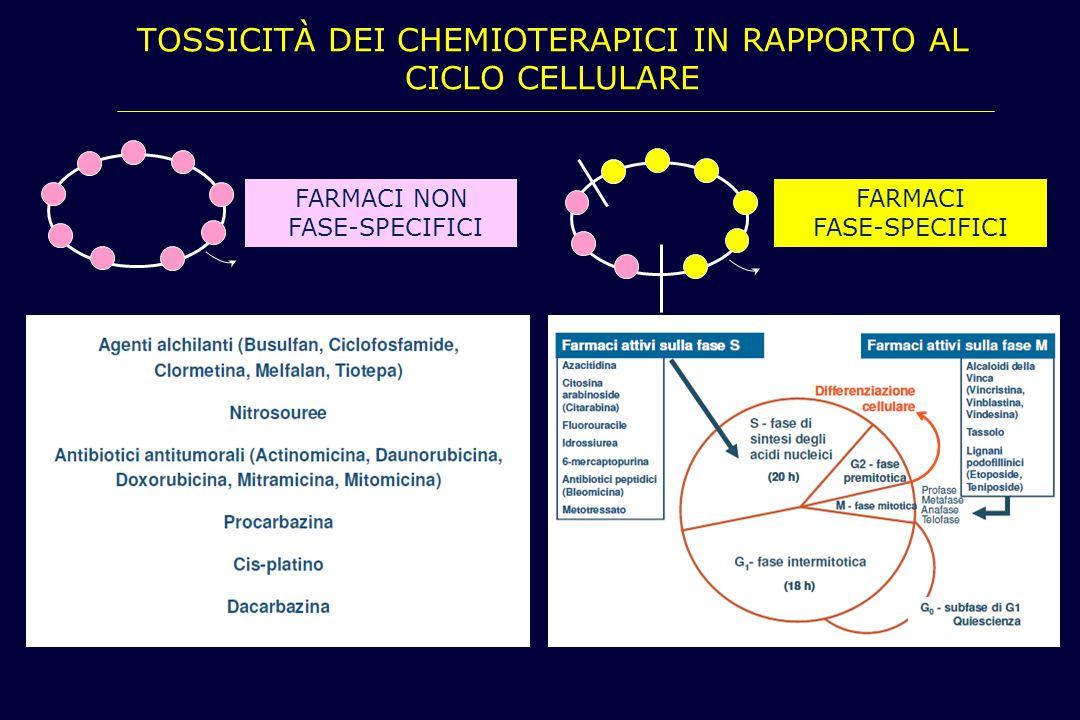 tossicità dei chemioterapici in rapporto al ciclo cellulare