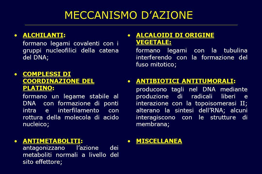 MECCANISMO D'AZIONE Alchilanti: