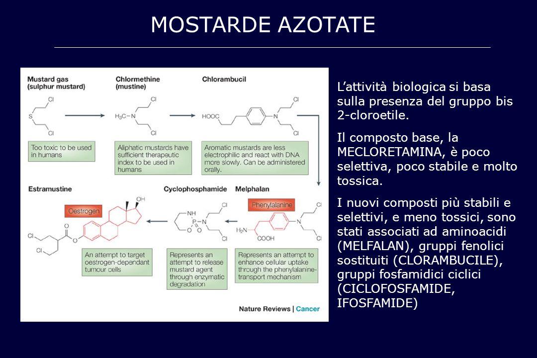 MOSTARDE AZOTATE L'attività biologica si basa sulla presenza del gruppo bis 2-cloroetile.