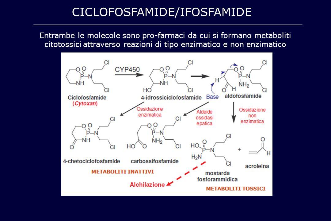 CICLOFOSFAMIDE/IFOSFAMIDE