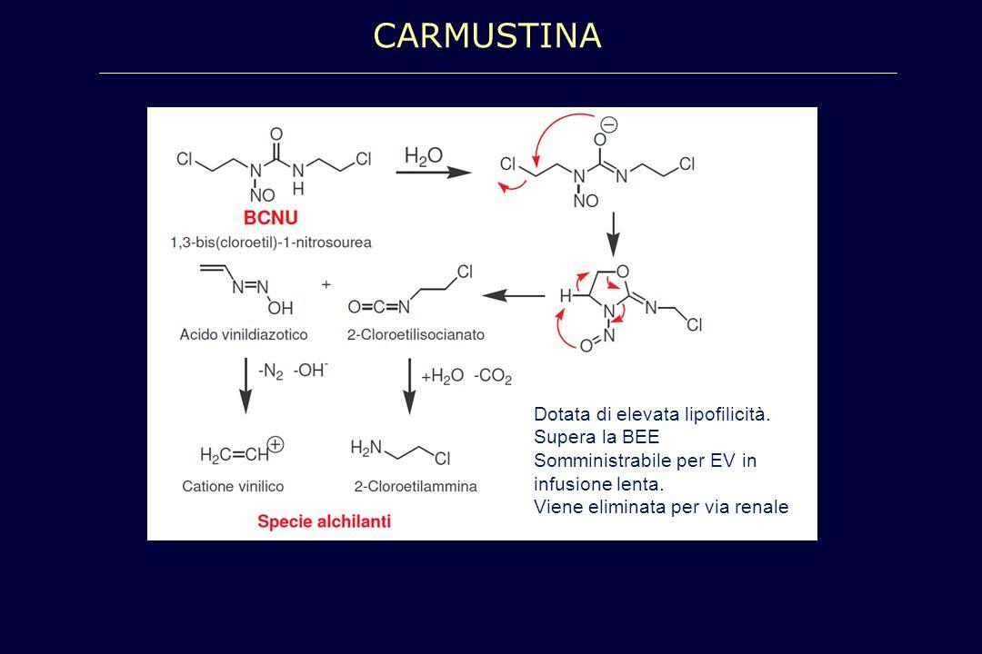 CARMUSTINA Dotata di elevata lipofilicità. Supera la BEE