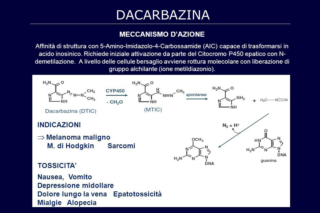 DACARBAZINA MECCANISMO D'AZIONE INDICAZIONI  Melanoma maligno