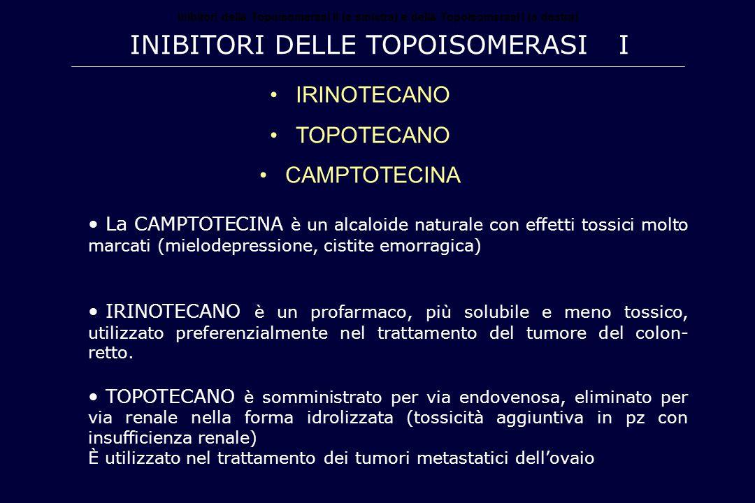 Inibitori delle Topoisomerasi I