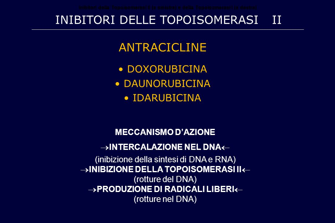 Inibitori delle Topoisomerasi II