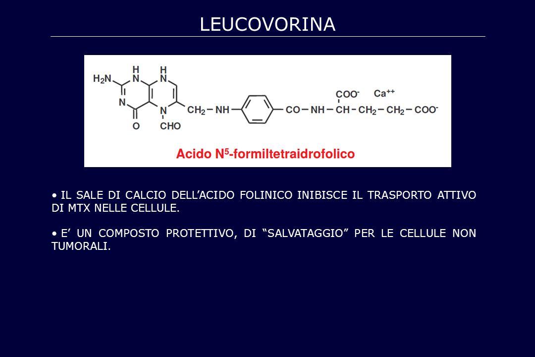 leucovorina IL SALE DI CALCIO DELL'ACIDO FOLINICO INIBISCE IL TRASPORTO ATTIVO DI MTX NELLE CELLULE.