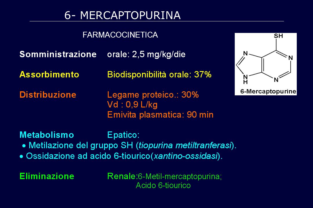 6- MERCAPTOPURINA farmacocinetica