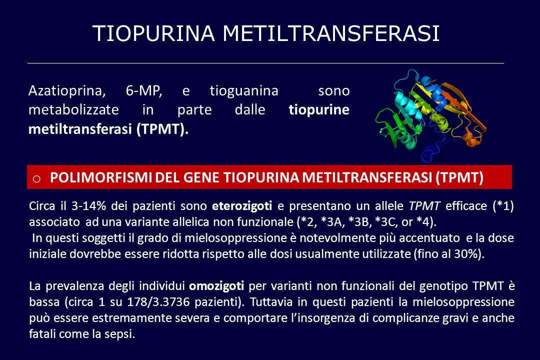 TIOPURINA METILTRANSFERASI