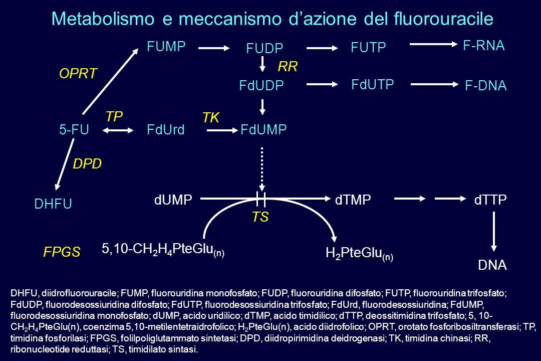 Metabolismo e meccanismo d'azione del fluorouracile