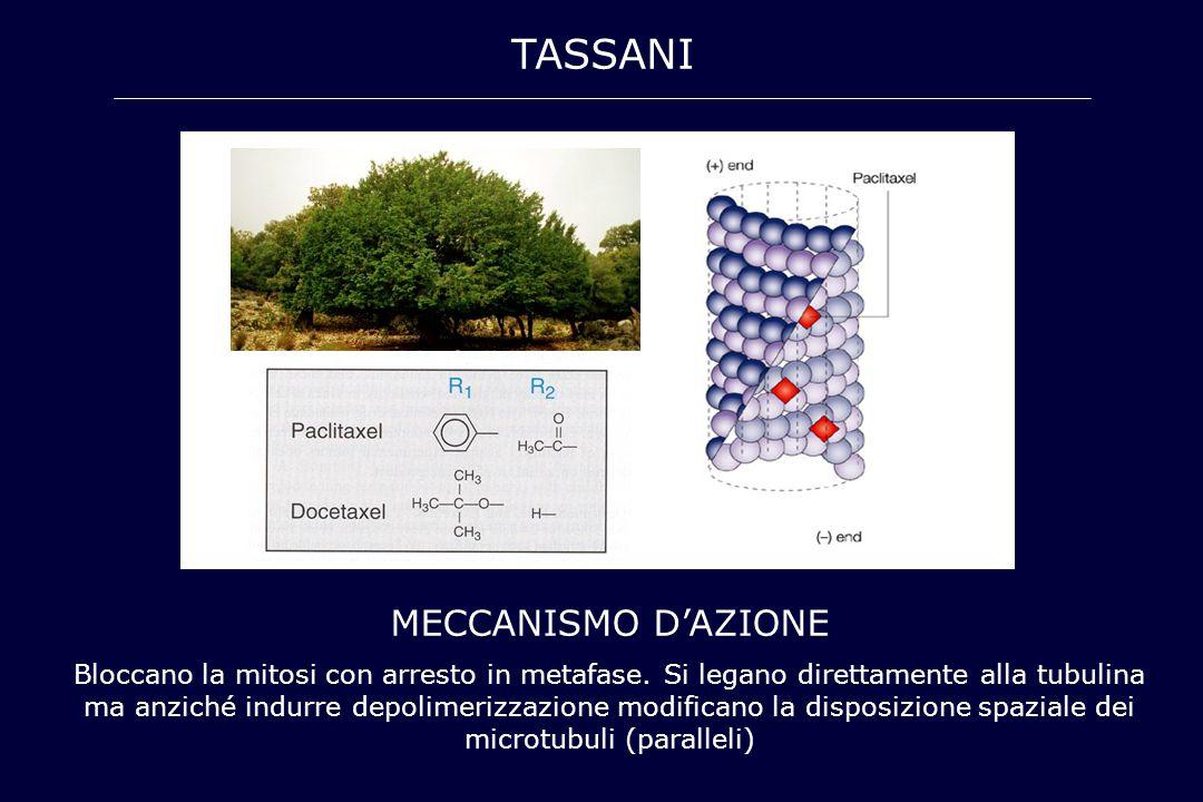 tassani MECCANISMO D'AZIONE