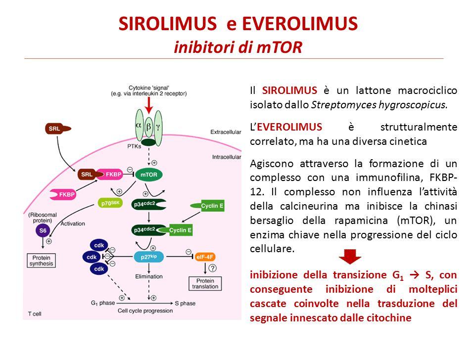 SIROLIMUS e EVEROLIMUS