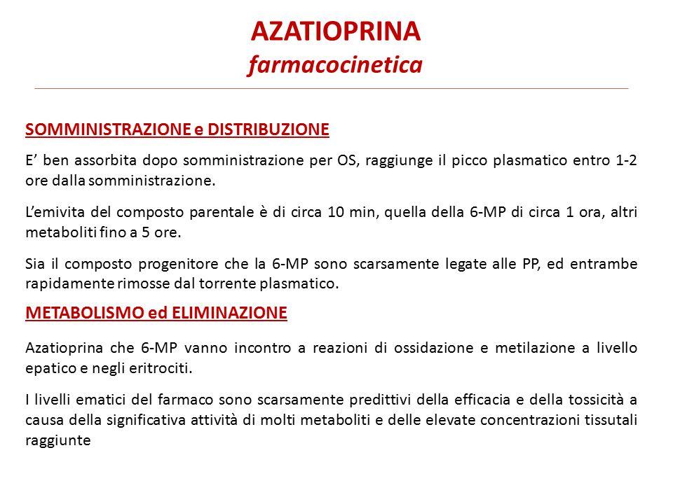AZATIOPRINA farmacocinetica