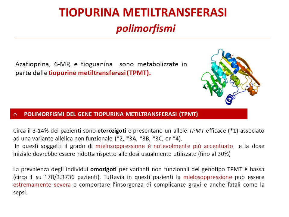 TIOPURINA METILTRANSFERASI polimorfismi