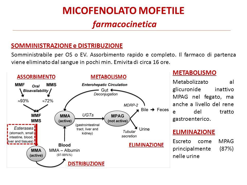 MICOFENOLATO MOFETILE farmacocinetica