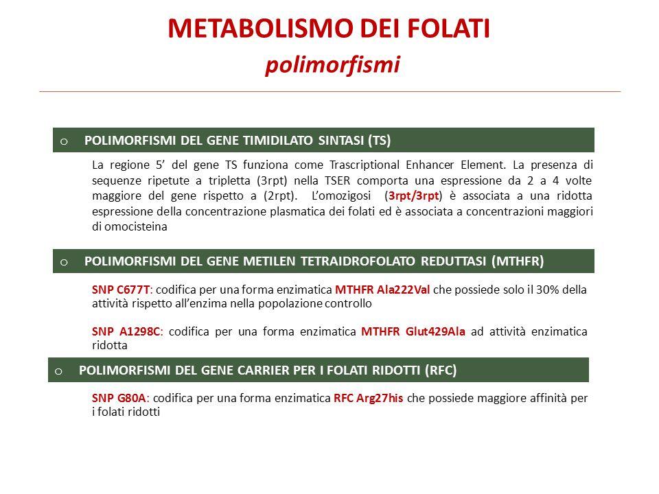 METABOLISMO DEI FOLATI polimorfismi