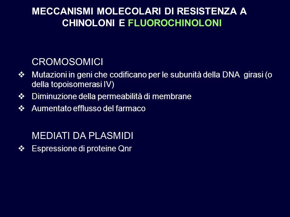 MECCANISMI MOLECOLARI DI RESISTENZA A CHINOLONI E FLUOROCHINOLONI