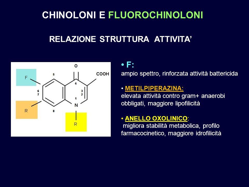 CHINOLONI E FLUOROCHINOLONI RELAZIONE STRUTTURA ATTIVITA'