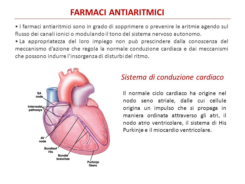 FARMACI ANTIARITMICI Sistema di conduzione cardiaco