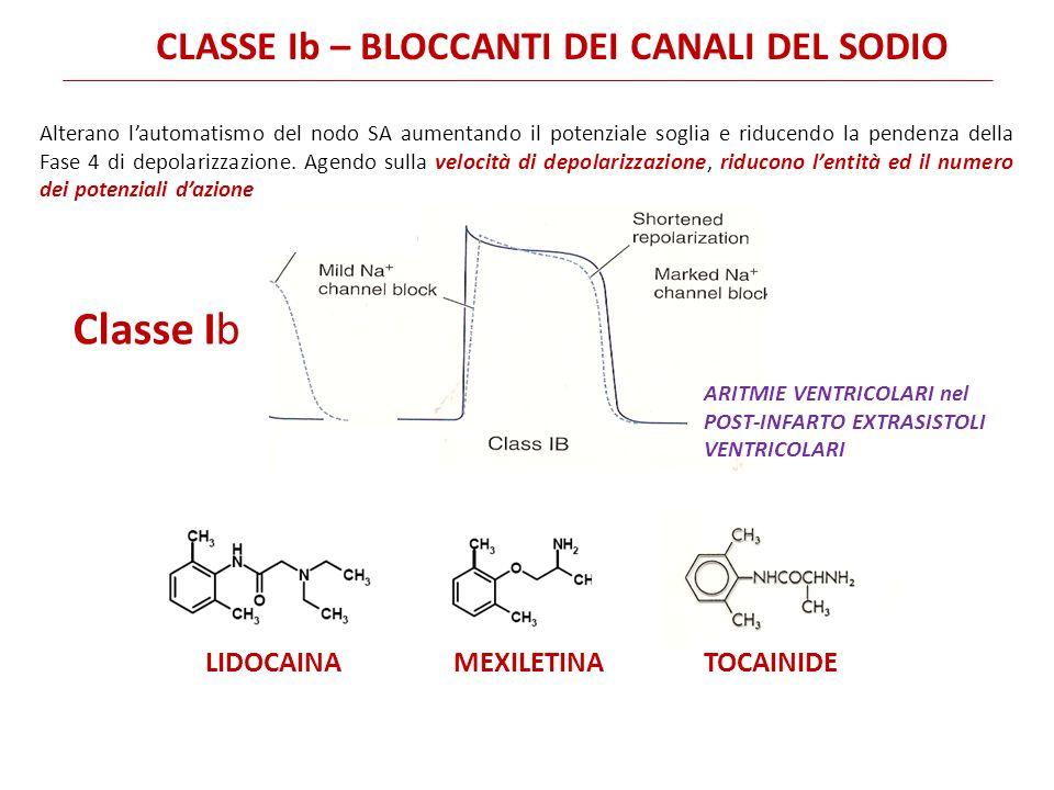 Classe Ib CLASSE Ib – BLOCCANTI DEI CANALI DEL SODIO LIDOCAINA