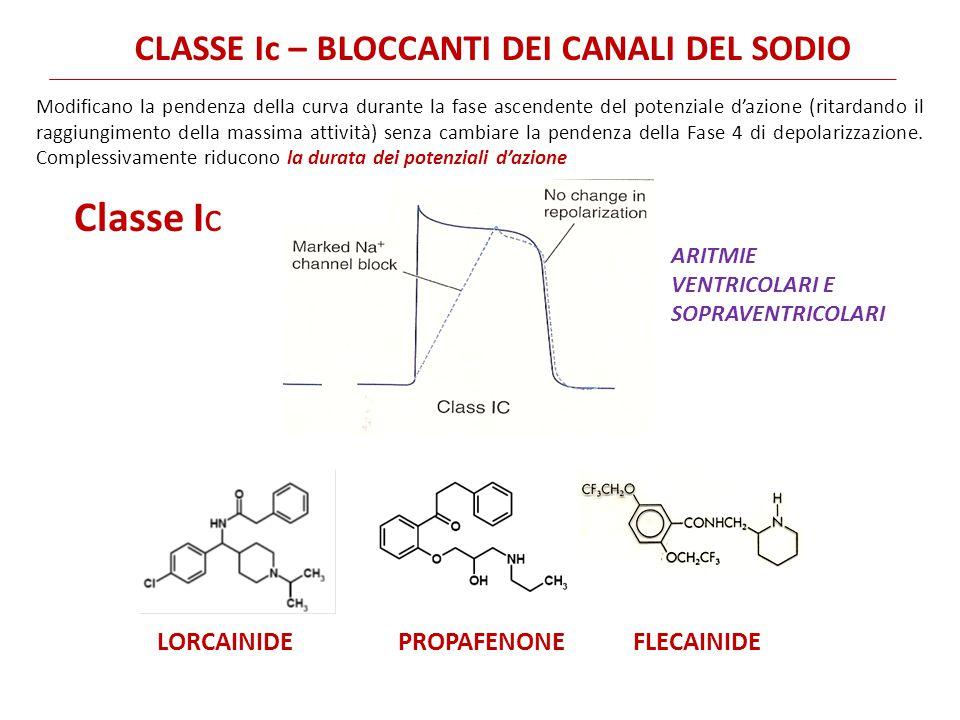 Classe Ic CLASSE Ic – BLOCCANTI DEI CANALI DEL SODIO LORCAINIDE