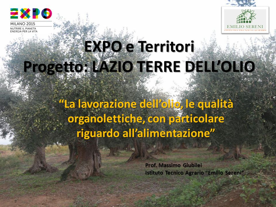EXPO e Territori Progetto: LAZIO TERRE DELL'OLIO