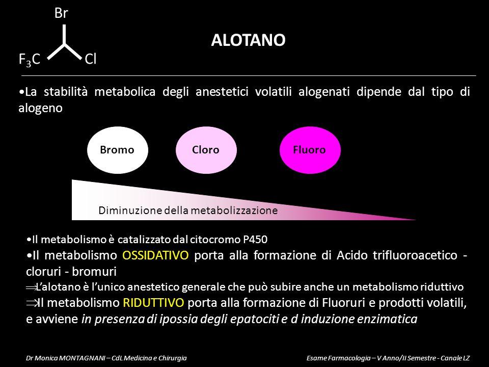 Diminuzione della metabolizzazione