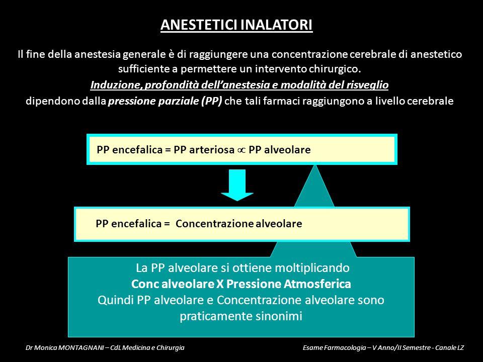 Conc alveolare X Pressione Atmosferica