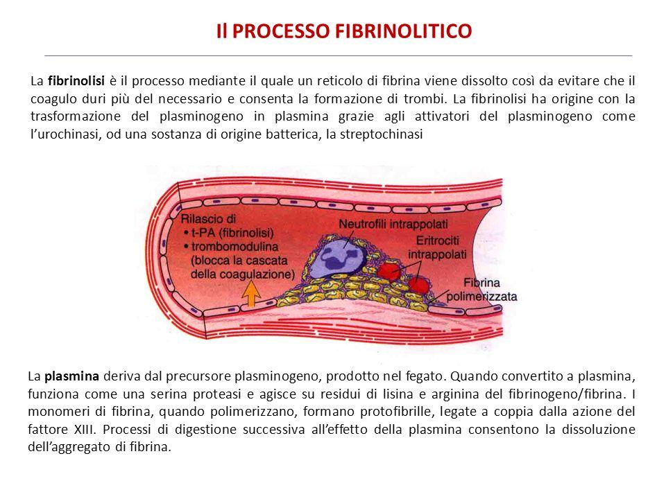 Il PROCESSO FIBRINOLITICO