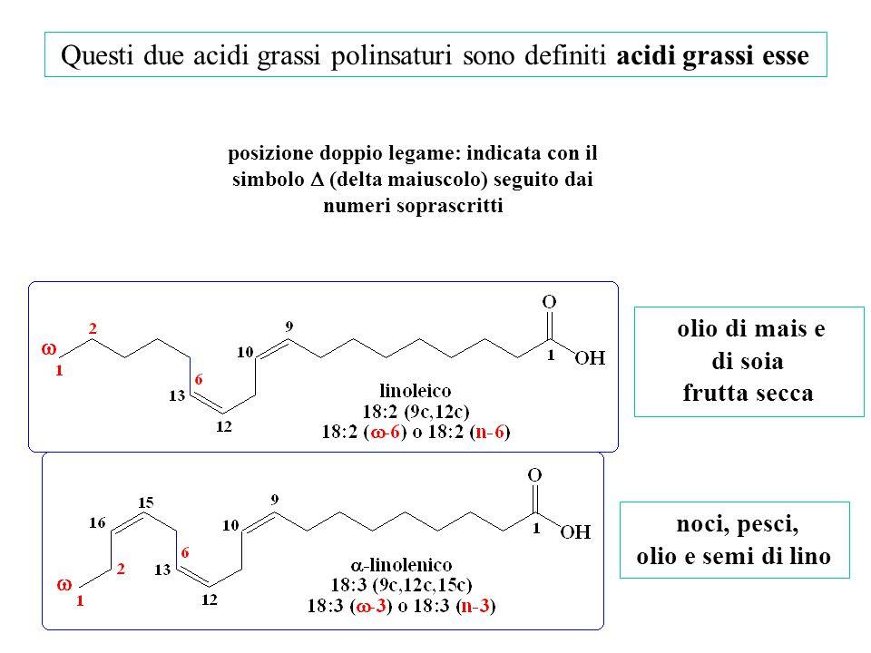 Questi due acidi grassi polinsaturi sono definiti acidi grassi esse