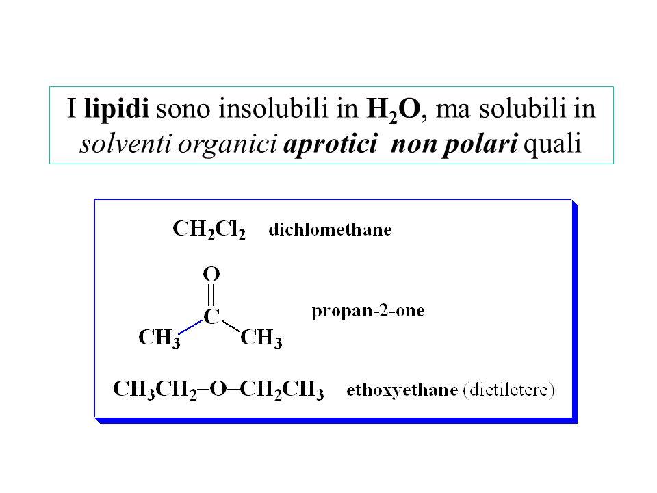 I lipidi sono insolubili in H2O, ma solubili in solventi organici aprotici non polari quali