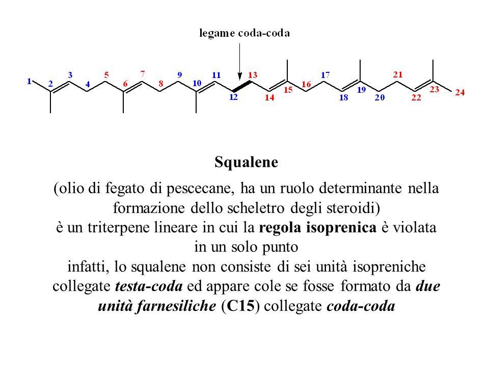è un triterpene lineare in cui la regola isoprenica è violata