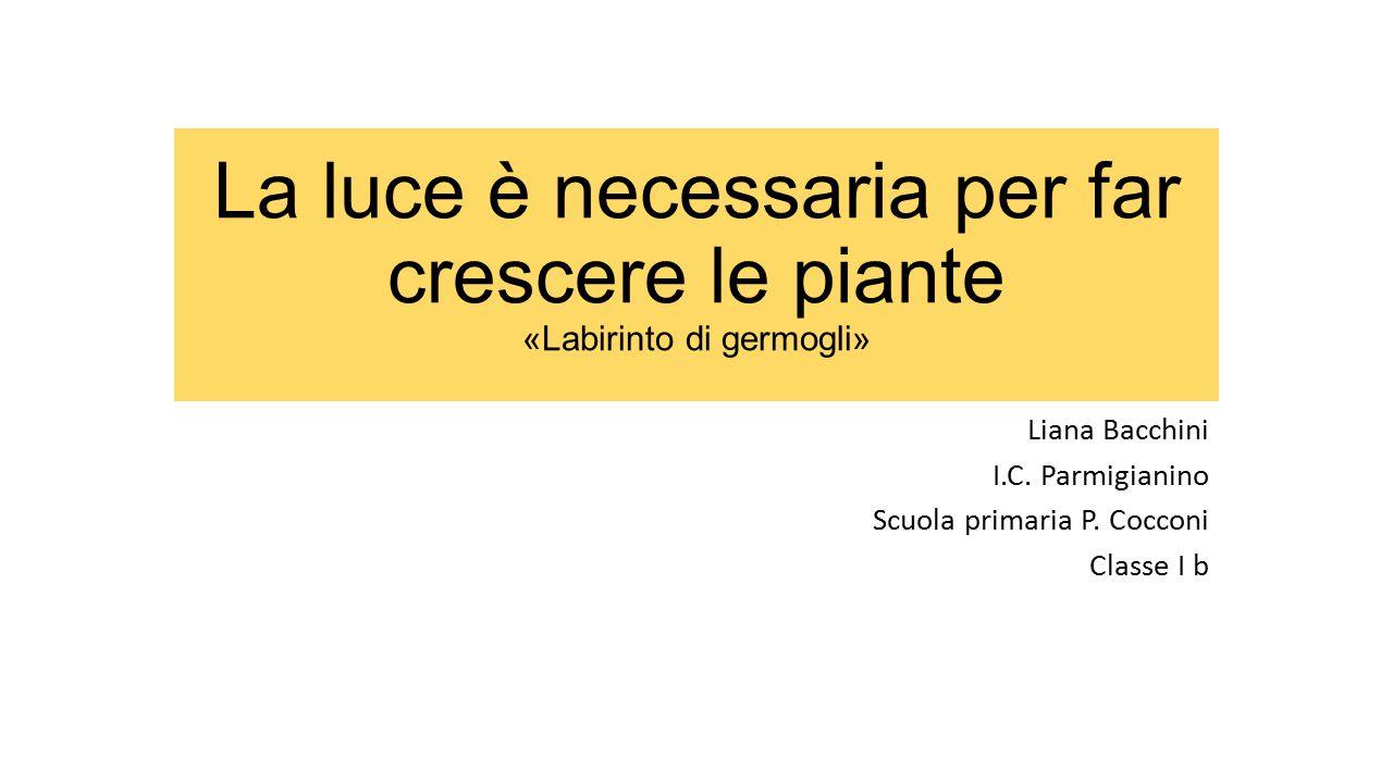 Liana Bacchini I.C. Parmigianino Scuola primaria P. Cocconi Classe I b