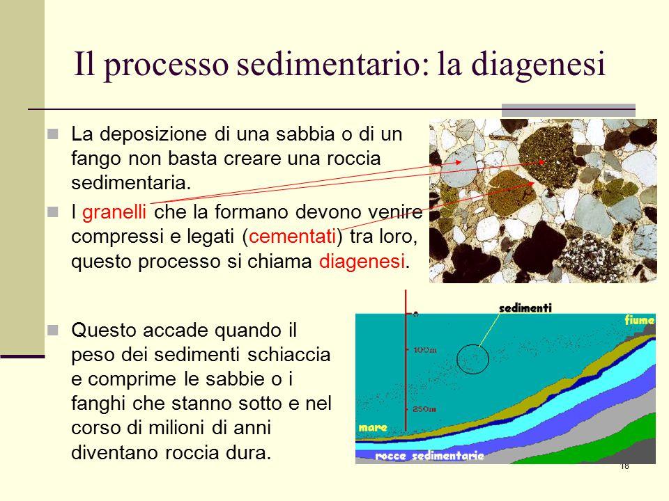 Il processo sedimentario: la diagenesi