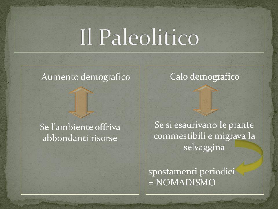 Il Paleolitico Aumento demografico Calo demografico