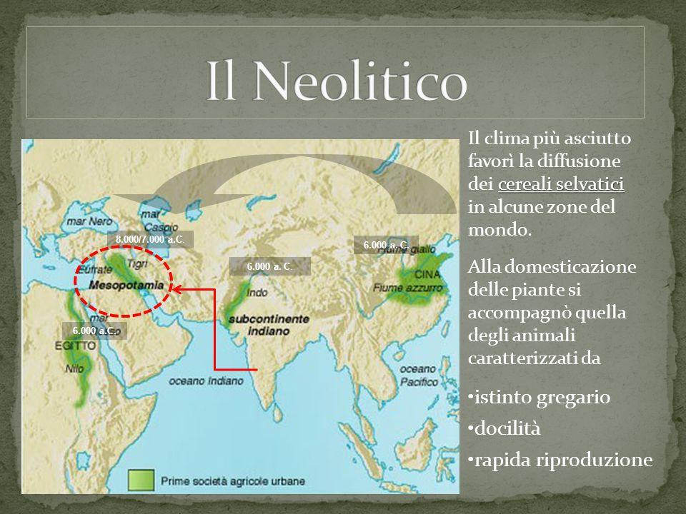 Il Neolitico istinto gregario docilità rapida riproduzione