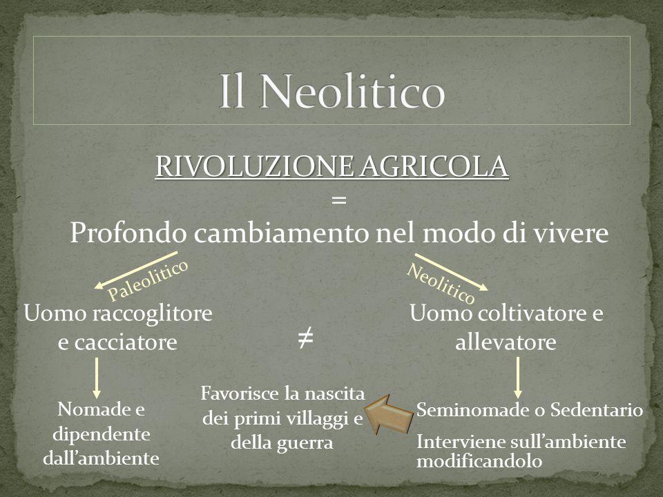 Il Neolitico RIVOLUZIONE AGRICOLA =