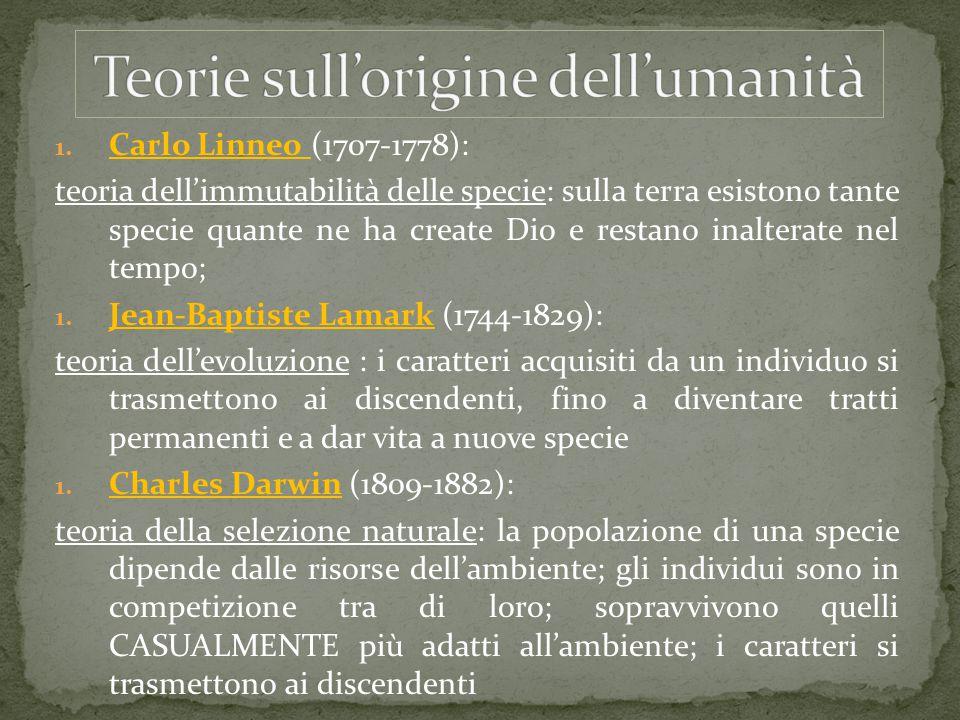Teorie sull'origine dell'umanità
