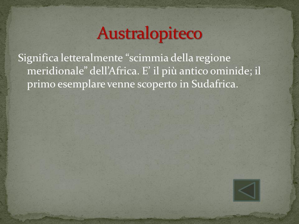 Australopiteco