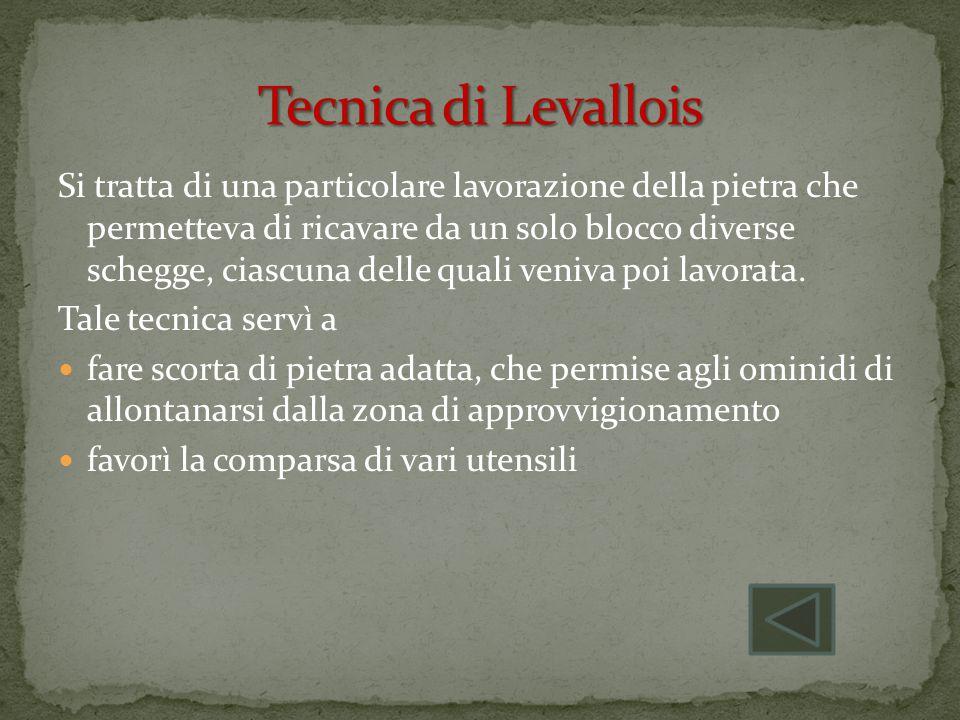 Tecnica di Levallois